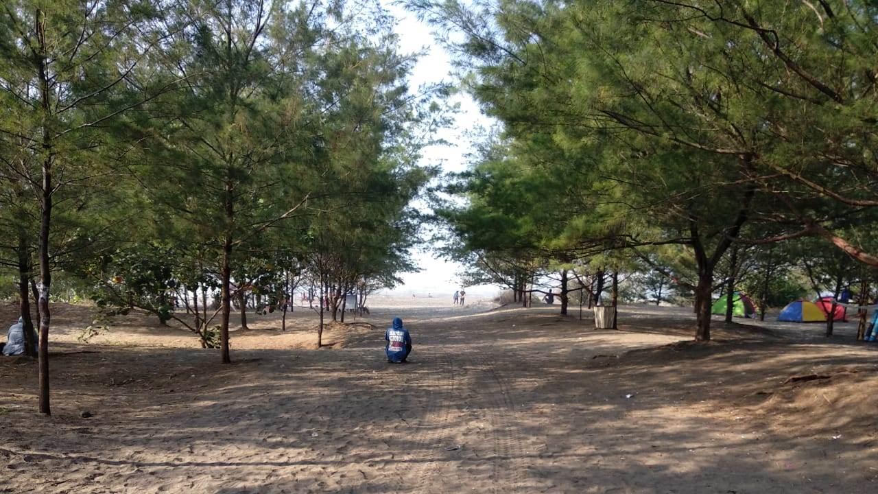 Kelokan dan Pesona Pantai Cemara Cipanglay Cianjur Selatan Yang Masih Belum Terkenal