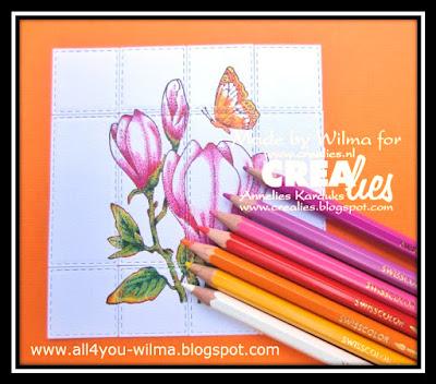 https://www.all4you-wilma.blogspot.com