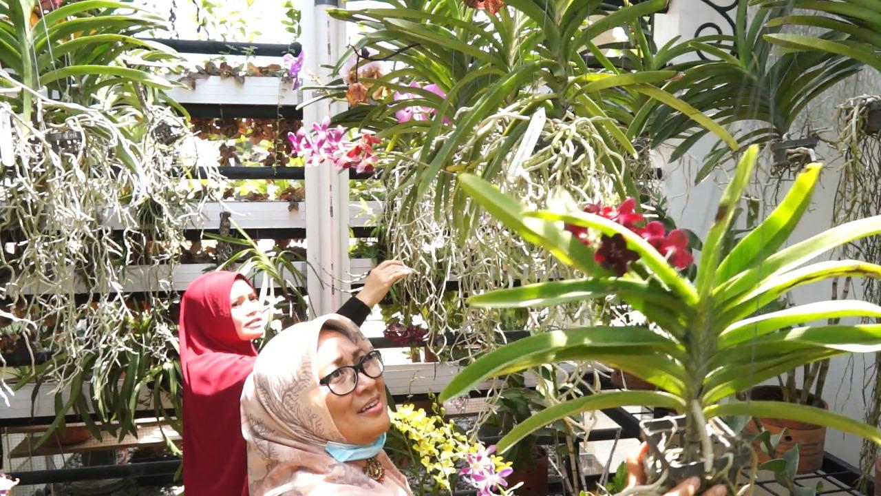 Iin Arif Sugiyanto Ajak Warga Manfaatkan Halaman Rumah jadi Lahan Produktif