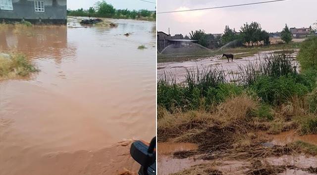 Yaylak'ta ekili alanları dolu ve sel vurdu