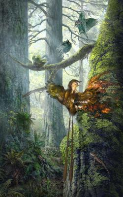 Representación de un ave con el ala atrapada en la resina de un árbol.