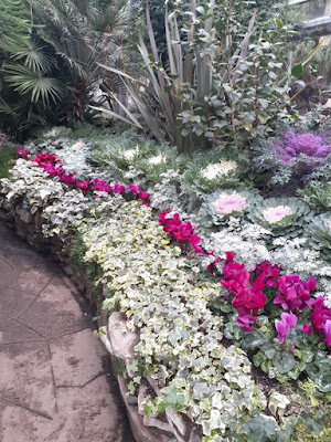Allan Gardens Conservatory 2019 Winter Flower Show four by garden muses--not another Toronto gardening blog