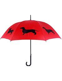 The San Francisco Umbrella Company and National Umbrella Day