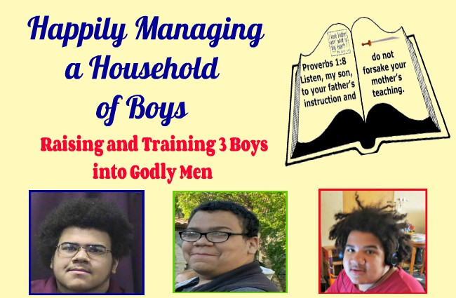 Happily Managing a Household of Boys