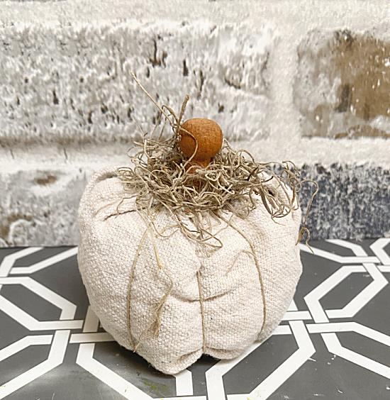 pumpkin with spanish moss