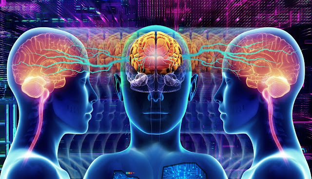العلاقة بين العقل والدماغ