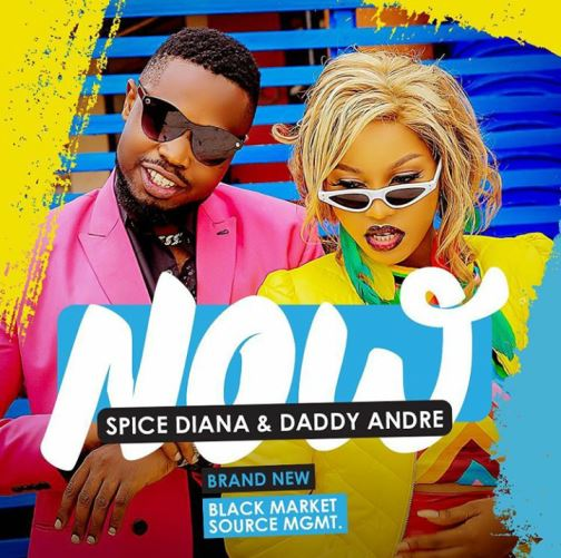 Spice Diana Ft Daddy Andre - Now