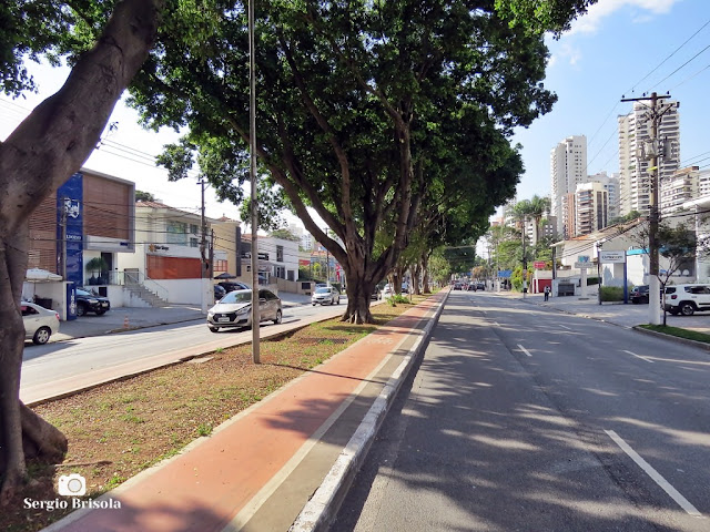 Vista de trecho da Avenida Pacaembu - São Paulo