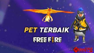 Pet FF Terbaik