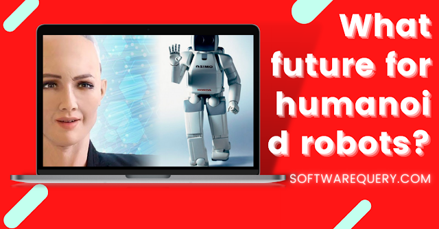 softwarequery.com-What future for humanoid robots