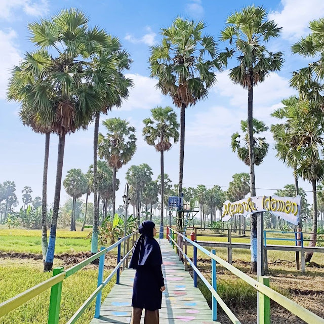 Edu Wisata Lontar Sewu Gresik Jawa Timur