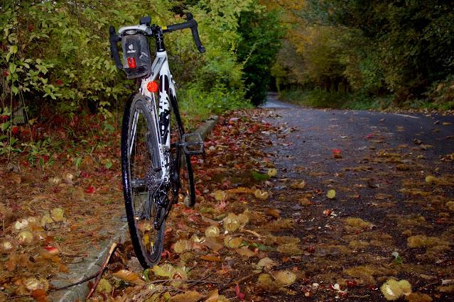 autumn leaves caterham
