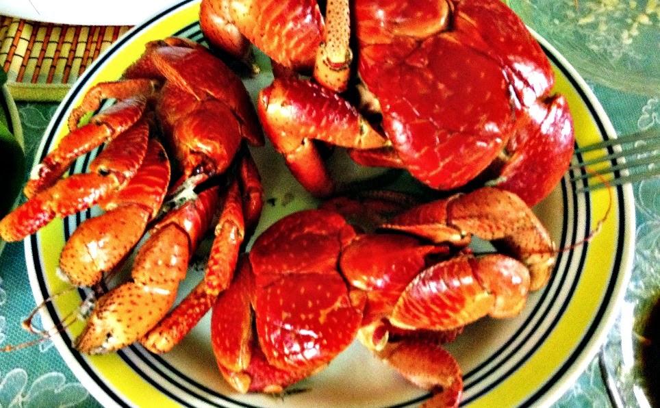 Coconut Crab Batanes Cuisine