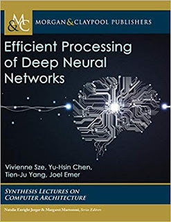 Efficient processing of Deep neural networks PDF