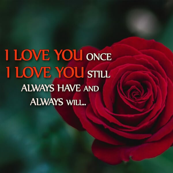 Romantic Status Hindi And English