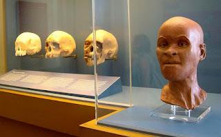 fóssil Luzia o mais antigo ser humano encontrado no Brasil