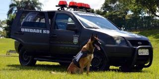 Guarda Municipal Foz do Iguaçu (PR) comunica renovação do contrato do projeto K9