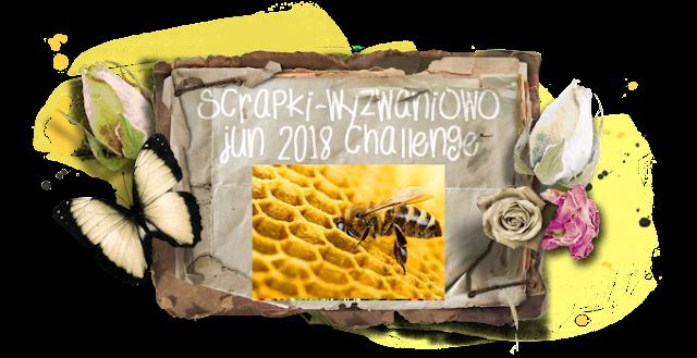 June 2018 Challenge - Bees