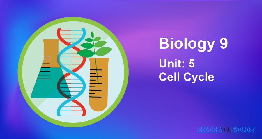 KIPS 9th Class Biology Notes Unit 5: Cell Cycle