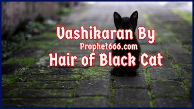 Vashikaran By Hairs of Black Cat