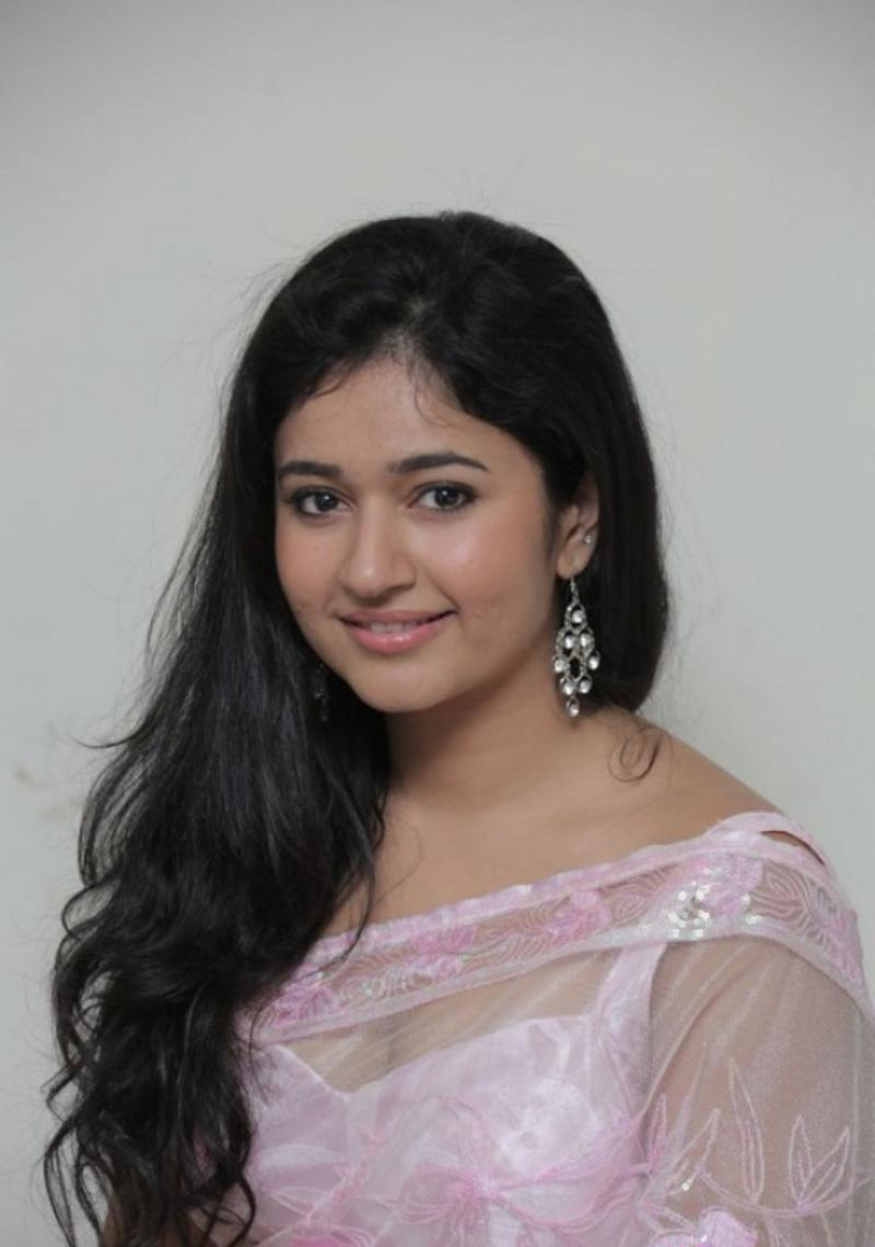 Beautiful Telugu Girl Poonam Bajwa Long Hair In Pink Saree