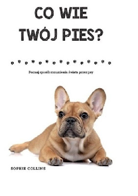 Co wie twój pies?- Sophie Collins
