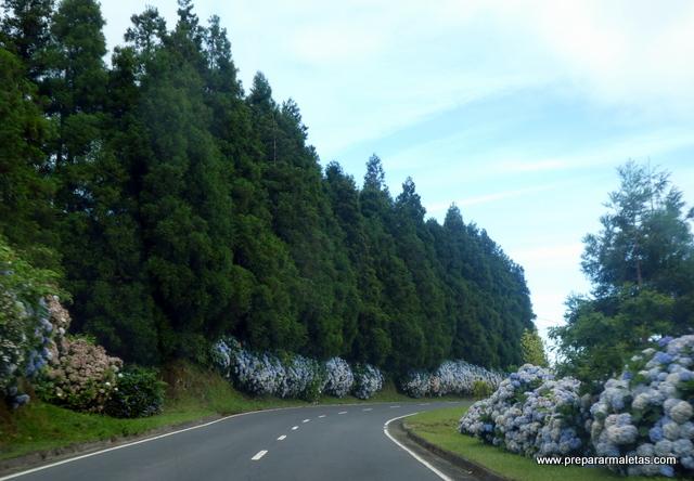 carretera isla San Miguel Azores