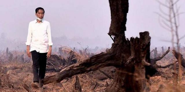 Gagal Atasi Kebakaran Hutan, Presiden Jokowi Ancam Copot Pejabat TNI-Polri
