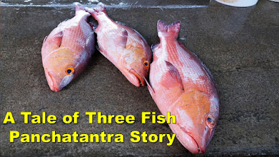 A-Tale-of-Three-Fish-Panchatantra-Story