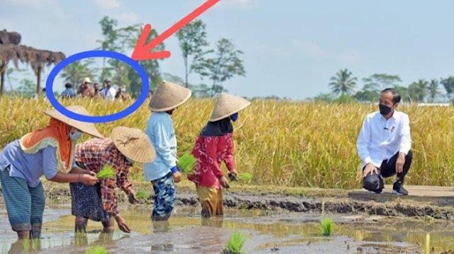 Bedah Foto Jokowi Tinjau Petani Tanam Padi, Roy Suryo: Bocor di Belakang