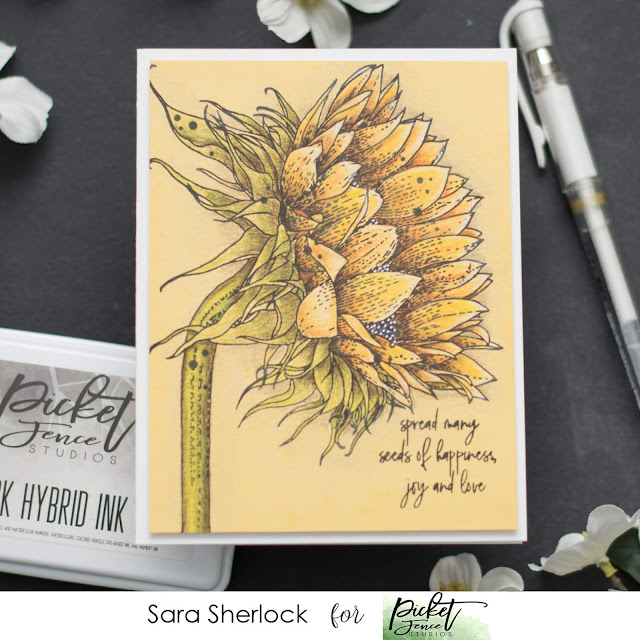 Picket Fence Studios, April 2020 Release, Face the Sun Stamp Set, coloring, colored pencils, Prismacolor pencils