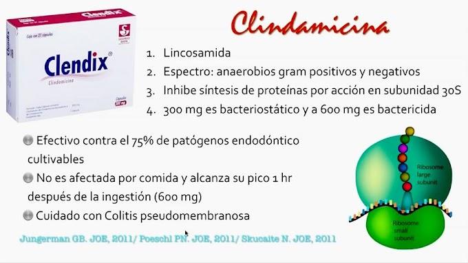 ANTIBIÓTICOS en Endodoncia - C.D.E.E. Elisa Betancourt Lozano
