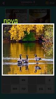 осенний пруд с плавающими утками в игре 667 слов 8 уровень