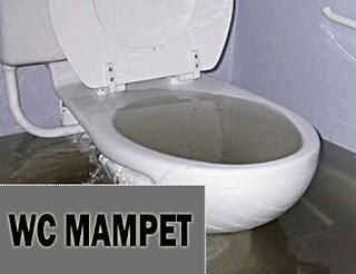 Mengapa WC Sering Mampet