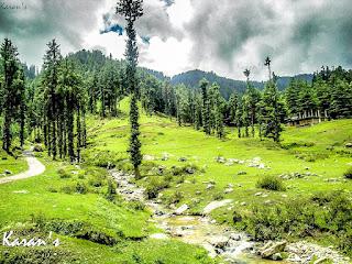 lush green valley.