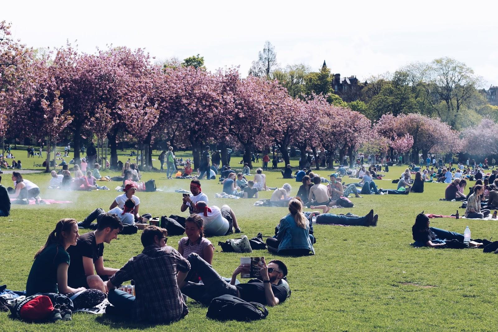 Spacery po Edynburgu - The Meadows Park {10+ adresów do odwiedzenia}