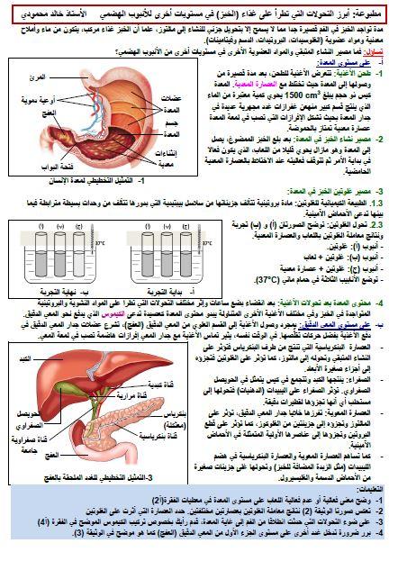 مذكرات مورد تحولات الأغذية خلال الهضم علوم طبيعية للسنة الرابعة متوسط خالد محمودي 2019