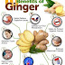 10 Incredible Health Benefits Of Ginger