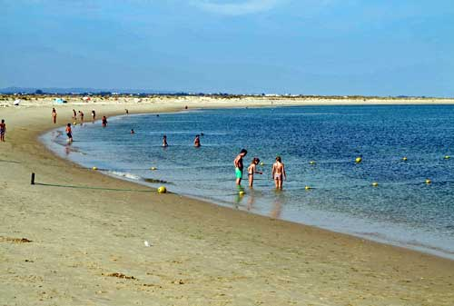 Visitor S Guide To Long Beach Island