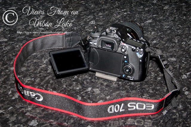Canon EOS 70D showing articulating Screen