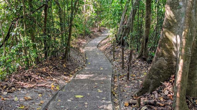 Costa Rica Itinerary: trail at Manuel Antonio NP