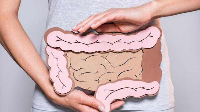 5 Manfaat Kacang Polong Bagi Kesehatan Tubuh Yang Perlu Diketahui