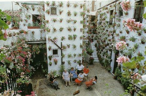 Da semente rvore hortas jardins cultivo intensivo em for Macetas para muros verticales