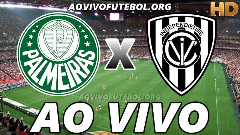 Palmeiras x Independiente Del Valle Ao Vivo Hoje em HD