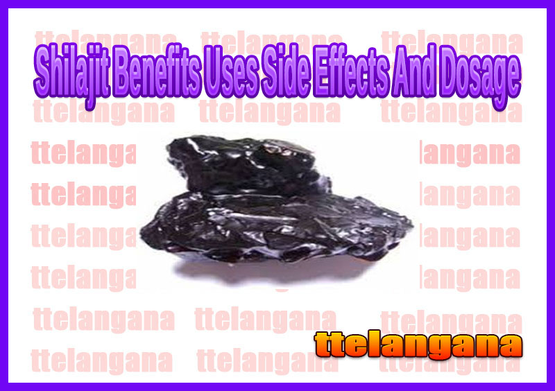 Shilajit Benefits Uses Side Effects And Dosage