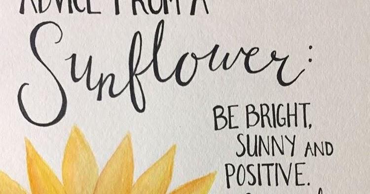 Mr  Z's Bobcat Update: Advice from a Sunflower
