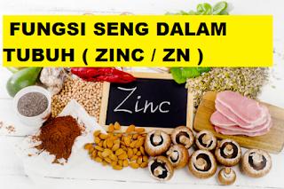 menegenal jenis makanan pengasil zinc