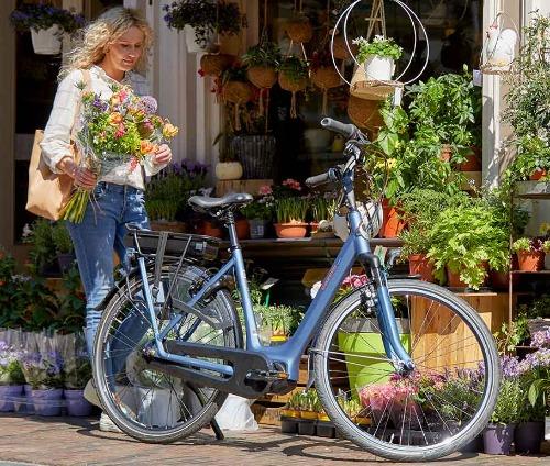 Gazelle elektrische fietsen