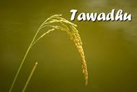 10 HADITS KEUTAMAAN TAWADHU / RENDAH HATI