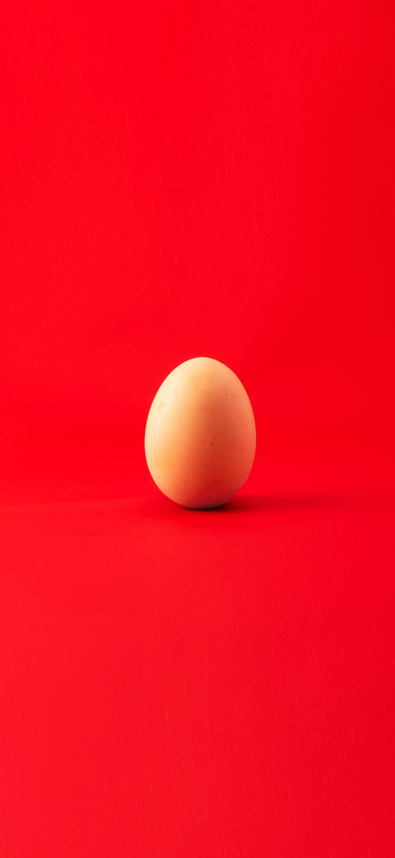 بيضة بخلفية حمراء